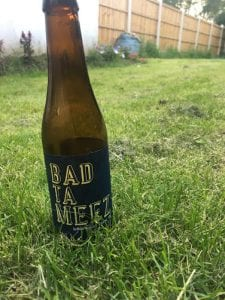 Is beer vegan? Beer left out in the sun