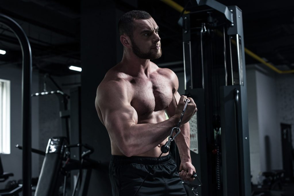Can Bodybuilding Be a Career?
